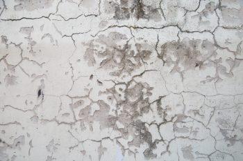 塗膜の剥がれ、膨れに関する保証